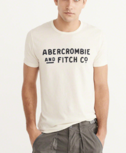 Camiseta Abercrombie & Fitch Applique Graphic Tee White