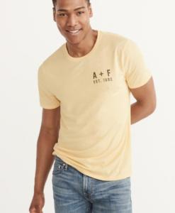 Camiseta Abercrombie & Fitch Burnout Logo Tee
