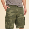 Hollister Cali Longboard Cargo Shorts Verde,
