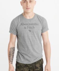 Camiseta Abercrombie & Fitch Logo Tee Grey