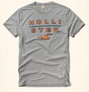 c4e3b19706 Camiseta Hollister Cinza (M) - EuEnvio Importados  Relógios