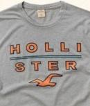 Camiseta Hollister Cinza M