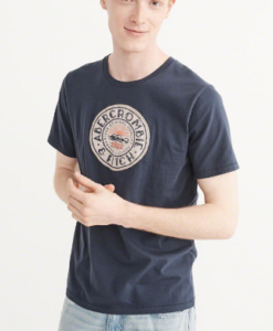 Camiseta A&F Applique Logo Graphic Tee