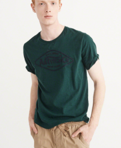 Camiseta A&F Applique Logo Graphic Tee Verde