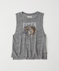 Blusa Abercrombie & Fitch Graphic Muscle Tank Gray