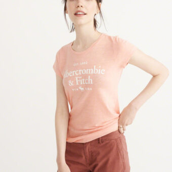 Blusa Abercrombie & Fitch Logo Graphic Tee Light Pink