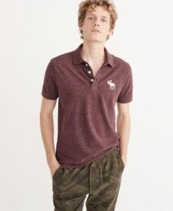 Camisa Polo A&F Big Icon Burgundy