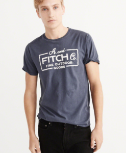 Camiseta A&F Garment Dye Graphic Tee Azul