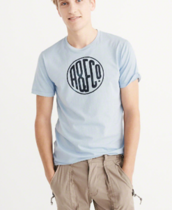 Camiseta A&F Garment Dye Graphic Tee Light Blue